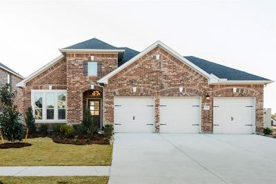 Conroe Single Family Home For Sale: 17654 Northern Harrier