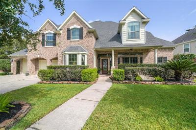 Houston Single Family Home For Sale: 13631 Elm Shores Drive