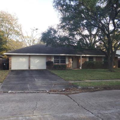 Houston Single Family Home For Sale: 1818 Salford Drive