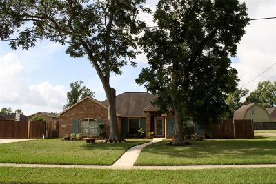 Single Family Home For Sale: 214 Milo Street