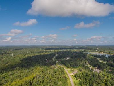 Spring Residential Lots & Land For Sale: 27426 Shady Hills Landing