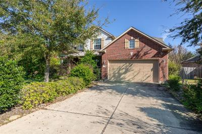 League City Single Family Home For Sale: 418 Cranbrook Lane