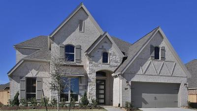 Tomball Single Family Home For Sale: 21407 Martin Tea Trail