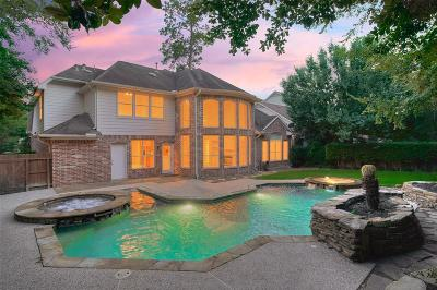 The Woodlands Single Family Home For Sale: 7 Millwright Place