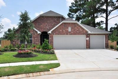 Tomball Single Family Home For Sale: 11119 English Holly Court