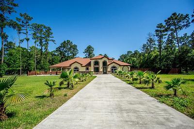Porter Single Family Home For Sale: 19881 S Plantation Estates