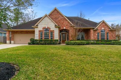 Conroe Single Family Home For Sale: 2121 Summit Mist Drive