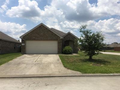 Houston Single Family Home For Sale: 2767 Morgensen Drive