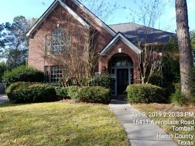 Tomball Single Family Home For Sale: 12510 Leyton Court
