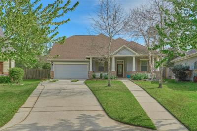 The Woodlands Single Family Home For Sale: 38 E Tapestry Park Circle