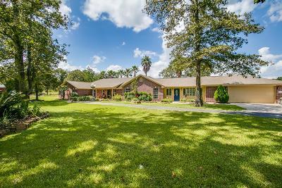 Magnolia Single Family Home For Sale: 24805 Red Oak Street