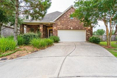 Katy Single Family Home For Sale: 26835 Longleaf Valley Drive