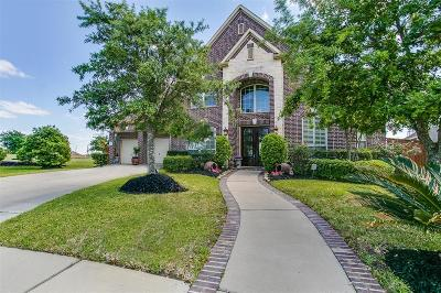 Cypress Single Family Home For Sale: 19503 S Comal River Drive