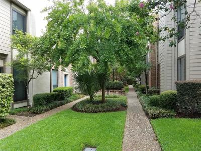 Houston Condo/Townhouse For Sale: 1201 McDuffie Street #186