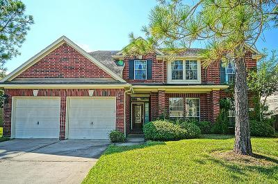 Pearland Rental For Rent: 3206 Sandstone Court