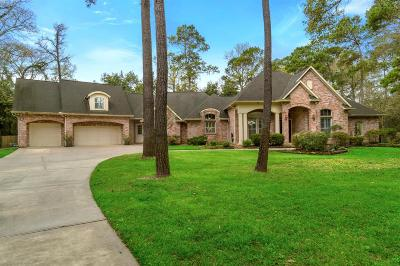 Spring Single Family Home For Sale: 28607 Benderwood Court