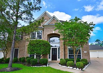 Pearland Single Family Home For Sale: 2618 Martinec Drive