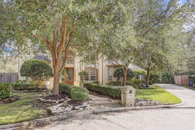 Houston Single Family Home For Sale: 14103 Chartley Falls Drive