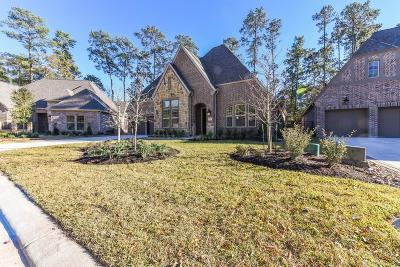 Conroe Single Family Home For Sale: 110 Aster Glow