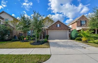 Katy Single Family Home For Sale: 9419 Sparrow Creek Court