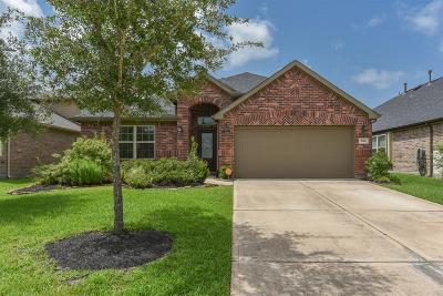 Spring Single Family Home For Sale: 3770 Paladera Place Court