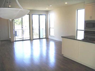 Houston Single Family Home For Sale: 1432 Ennis Street