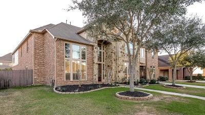 Friendswood Single Family Home For Sale: 3108 Richard Lane