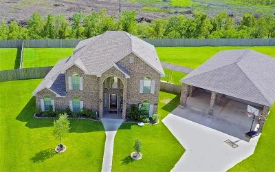 Manvel Single Family Home For Sale: 1 Cypress Point Court