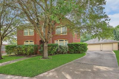 Sugar Land Single Family Home For Sale: 2106 Thistlerock Lane