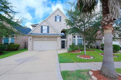 Sugar Land Single Family Home For Sale: 14318 Dunrobin Way