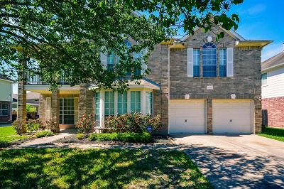 Sugar Land Single Family Home For Sale: 16730 Village View Trail
