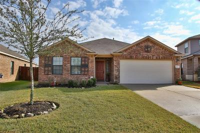 Tomball Single Family Home For Sale: 10219 Black Birch Lane
