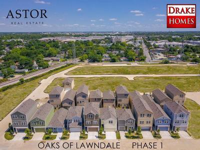 Houston Single Family Home For Sale: 5439 Holguin Hollow Street