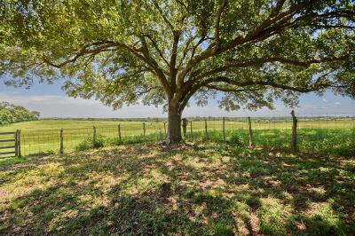 Washington County Country Home/Acreage For Sale: 1955 Wiesepape Road