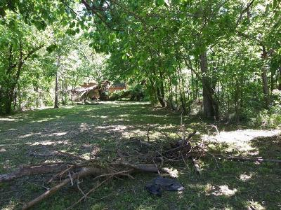 Residential Lots & Land For Sale: 7976 Fowlie