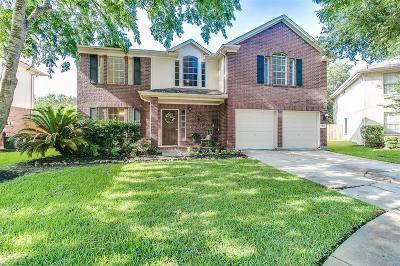 Sugar Land Single Family Home For Sale: 3119 Lonesome Ridge Court