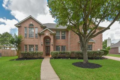 Galveston County, Harris County Single Family Home For Sale: 11203 Silver Rush Drive