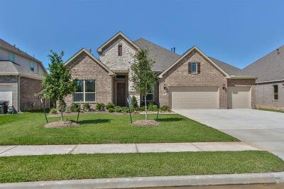 Tomball Single Family Home For Sale: 22807 Alderdale Lane