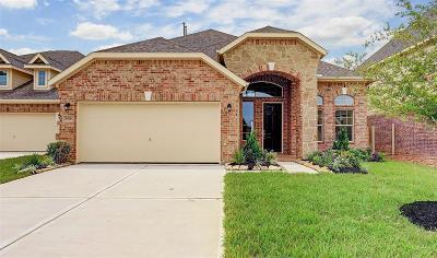 Katy Single Family Home For Sale: 24011 Bluestem Ridge Court
