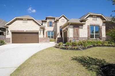 Tomball Single Family Home For Sale: 8906 Havenfield Ridge Lane