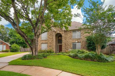Houston Single Family Home For Sale: 807 Knotty Elmwood Trail