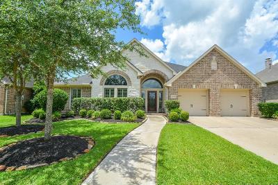 Sugar Land Single Family Home For Sale: 5542 Twin Rivers Lane