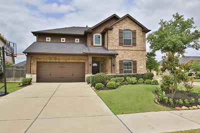Fulshear Single Family Home For Sale: 27231 Aspen Falls Lane