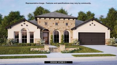 Friendswood Single Family Home For Sale: 809 Galloway Mist Lane