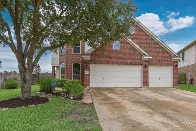 Houston Single Family Home For Sale: 19003 Youpon Hill Court