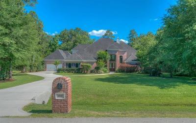 Spring Single Family Home For Sale: 3810 W Benders Landing Boulevard