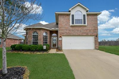 Tomball Single Family Home For Sale: 12606 Hobbs Terrace Drive