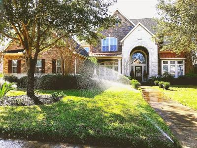 Harris County Single Family Home For Sale: 14211 Ashland Landing Drive