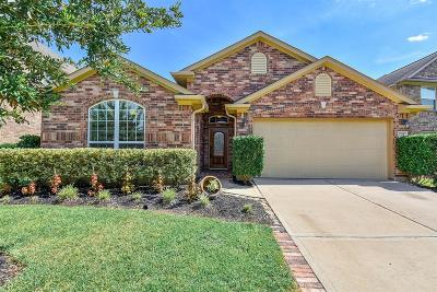 Fort Bend County Single Family Home For Sale: 7126 Stevenson Drive