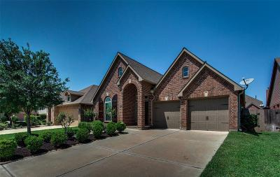 Sienna Plantation Single Family Home For Sale: 6707 Snow Star Court